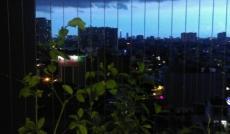 Cho thuê chung cư Phú Thạnh, quận Tân Phú, 2 phòng