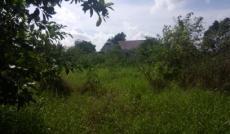 Cần bán gấp đất đường nội bộ Đa Phước cách ngã 4 Nguyễn Văn Linh QL50 khoảng 4km