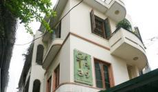 Bán biệt thự Võ Thị Sáu DT 14x30m, 1 trệt, 2 lầu, có sân vườn rộng, giá 50 tỷ