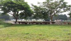 Bán đất Quận 2, đất mặt tiền sông cách Trần Não 100m. Giá 42 triệu/m2 LH 0918486904