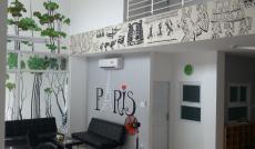 Bán 2 căn Penthouse tại CC B1 Trường Sa, Q. Bình Thạnh, HCM