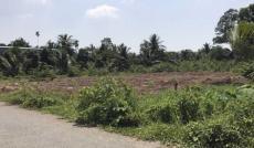Bán 4100 m2 đất trồng cây lầu nằm tại xã Long Hoà – Cần Giờ.