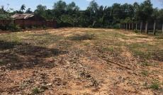 Cần bán nền đất 10x45, MT đường 197 Hoàng Hữu Nam, Q9, Giá 19tr/m2