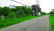 Bán 1200m2 đất đường song hành quốc lộ 50 Bình Chánh. 0903078370