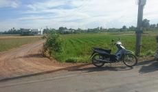 1.5tr/m2 đất mặt tiền đường nhựa 8m Hưng Long, Bình Chánh