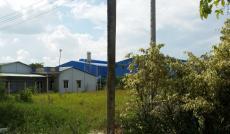 Bán 950 m2 đất Bình Chánh đường Hương Lộ 11 giá 2 tr/m2