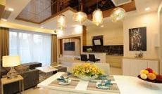 Cần bán căn hộ penthouse Sky Garden 2, Phú Mỹ Hưng, Quận 7. DT: 350m2, giá: 7,8 tỷ