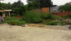 Bán đất 7x44m, thổ cư 100% hẻm 8 m, QL 13, P. Hiệp Bình Phước, Thủ Đức