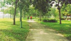 Nhận giữ chỗ căn hộ cao cấp 2PN view công viên 7500m2 cực đẹp tại Celadon City