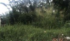 Đất mặt tiền 9A, Phước Thiện, giá chỉ 32tr/m2