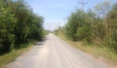 Bán đất 87 hecta,Tân An Hội, Củ Chi giá 400 tỷ