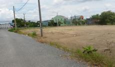 Kẹt tiền bán gấp 3000 m2 Đất đường 835b giá chỉ 900k/m2