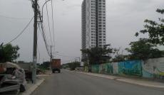 Bán gấp đất nền dự án Lotus Residence, Phú Thuận, Quận 7, giá rẻ nhất thị trường