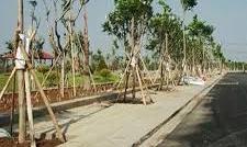 3 Lô đất thổ cư 5x18m, MT Nguyễn thị định cát lái