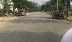 Bán đất biệt thự 12x20 đường số 65 rộng 25m KDC Tân Quy Đông