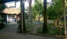 Bán Đất, Nhà Vườn Đường 423, Củ Chi, Hồ Chí Minh diện tích 7462m2  giá 11.193 Tỷ