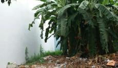 Bán lô đất thổ cư khu Sài Gòn Mới, Nhà Bè, DT 4,5x12m. Giá 1,77 tỷ