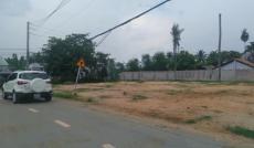 Cần bán đất Đường số 8, P.Long Phước, Q.9, DT: 2500m2, đất vườn. Giá: 3.8tr/m2