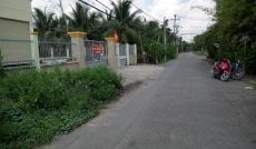 Bán đất MT đường Nhị Bình 8, xã Nhị Bình, huyện Hóc Môn, 1605m2, SHR. Giá 6 tr/m2