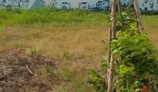 Cần bán 1889m2 đất, có 787m2 CT, MT đường Bùi Thanh Khiết, 1.8 tỷ