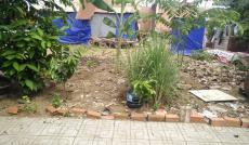 Bán đất tại Đường Nguyễn Duy Trinh, Quận 9, Hồ Chí Minh diện tích 65m2  giá 37 Triệu