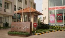 Cho thuê căn hộ chung cư Ruby Land Q.Tân Phú.116m2,3pn.nội thất dính tường,giá 9trt/h Lh 0932 204 185