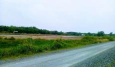 Tôi có lô đất 18000m2 ở huyện Cần Giờ, cần bán giá chỉ 1.6tr/m2