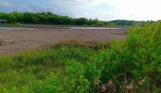 Cần bán đất mặt tiền Doi Lầu xã Lý Nhơn, huyện Cần Giờ, diện tích 18000m2