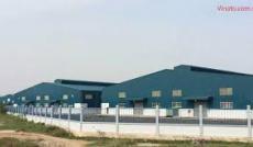 Cần cho thuê lại nhà xưởng may 28.000 m2 đang có hơn 500 công nhân ở Thị Trấn Củ Chi