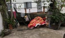 Bán nhà riêng tại Đường Huỳnh Tấn Phát, Quận 7, Hồ Chí Minh diện tích 27m2  giá 1.78 Tỷ