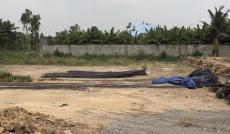 Bán đất chính chủ Thạnh Xuân 31, DT hơn 1000m2, giá 7.5 tỷ. LH 0987325954 A Hiền