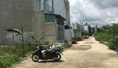 Đất Thạnh Lộc 39 cách đường Hà Huy Giáp chưa tới 300m