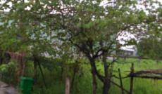 Bán đất thổ cư xây dựng sau trường kim đồng bình tân 44m2