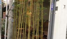 Sang gấp quán cafe mặt tiền Hoàng Dư Khương, P12, quận 10