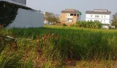 Chuyên bán đất nền dự án KDC Phú Xuân Vạn Phát Hưng, TP HCM, lô A2 giá rẻ chỉ 20tr/m2