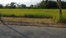 Chính chủ cần bán nền đất lô M(đã có sổ), KDC Thái Sơn, Nhà Bè, giá: 33tr/m2, liên hệ: 0931104102