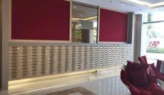 Dư nhà ở,Cần cho thuê căn hộ chung cư Diamond Lotus Lê Quang Kim Quận 8.