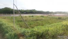 Cần bán đất mặt tiền Phà Doi Lầu, Cần Giờ, TPHCM. Diện tích 1,8ha, giá 1,6 tr/m2