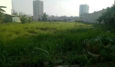 Mở bán khu A, khu đô thị An Phú An Khánh, quận 2
