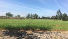 Đất nền KDC Phú Xuân, Nhà Bè, giá tốt nhất chỉ 20tr/m2