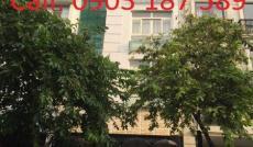 Cần cho thuê gấp nhà phố đang kinh doanh căn hộ dịch vụ khu Hưng Gia ở Phú Mỹ Hưng, Quận 7
