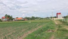 Đất vườn diện tích rộng, đường Tỉnh Lộ 2, Củ Chi, sổ hồng riêng, mặt tiền rộng