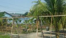 Cho thuê quán ăn sân vườn 450m2, mặt tiền 12m, giá rẻ