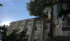 Cho thuê tòa nhà văn phòng số 24 Bạch Đằng, P2, TB, 6x32, 1 hầm 7 lầu. Giá 13.000$.