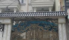 Bán biệt thự MT Lưu Chí Hiếu, 4.5x26m, đúc 4 tấm, 15.8 tỷ