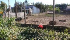 Bán lô đất hẻm đường Phạm Hữu Lầu, Phước Kiển, Nhà Bè