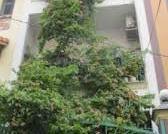 Bán nhà hẻm 6m Nguyễn Thiện  Thuật Q3 4,5m x 14m 3 lầu 11,5 tỷ