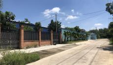 Bán nhà xưởng Nguyễn Thị Nê, Phú Hòa Đông, Củ Chi, giá: 7,5 tỷ