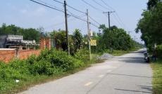 Bán đất MT Xuân Thới Sơn 12, Hóc Môn: 25 x 50= 1254,5m2, giá: 9,5tr/m2