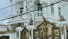 Bán Biệt Thự Khu Him Lam Quận 7, DT:19x30m.Giá 70 Tỷ